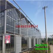 文洛型玻璃温室 生态餐厅温室 温室大棚 厂家直销