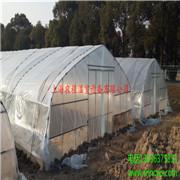 GP-622型单体钢管大棚 大棚支架 温室大棚 温室生产厂家