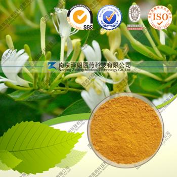 金银花提取物(绿原酸)