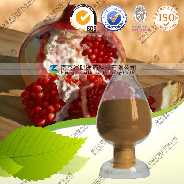 石榴提取物 厂家专业生产  纯天然 固体饮料
