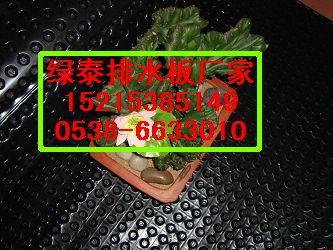 萍乡车库塑料排水板~&~萍乡车库塑料阻根防穿刺板生产