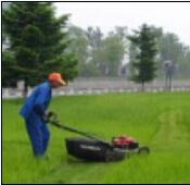 草坪割草机手推草坪机