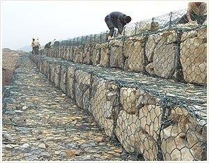 湖北石笼网 8*10石笼网源自生产厂家绝对低价哪里去找这么便宜的