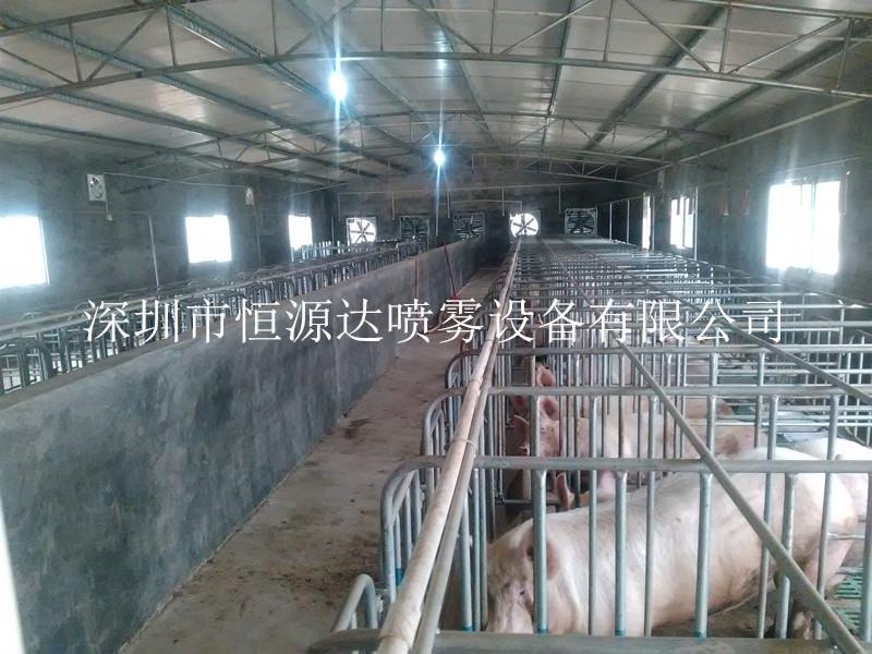 夏季畜牧业降温加湿工程