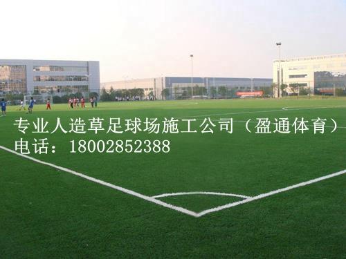 麻阳/新晃/芷江县足球场地坪施工建设方案人工草坪价格