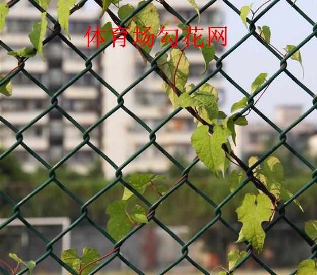 安平勾花网、菱形铁丝网、山坡勾花网 量大从优