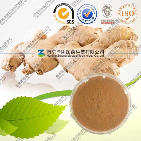 厂家生产直销 生姜提取物 现货低价供应 优质 商检报关