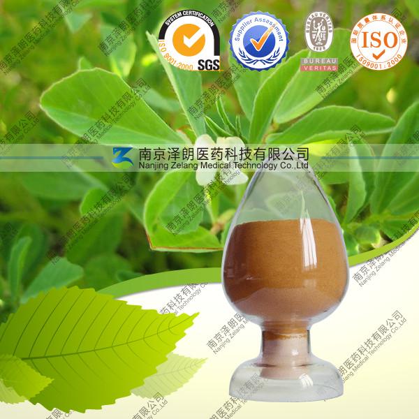 姜黄提取物/姜黄素厂家直销现货供应