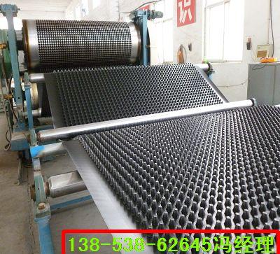 菏泽0.8-6.0cm高塑料排水板,合肥塑料排水板