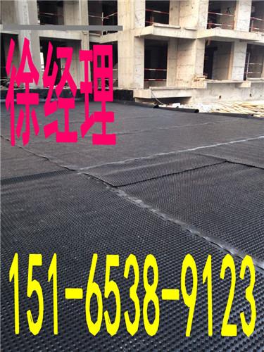 烟台蓄排水板厂家2015