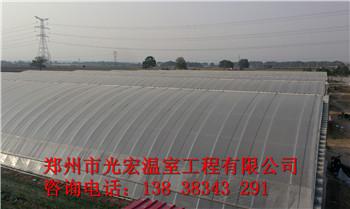 新乡冬暖式蔬菜大棚建造价格及公司
