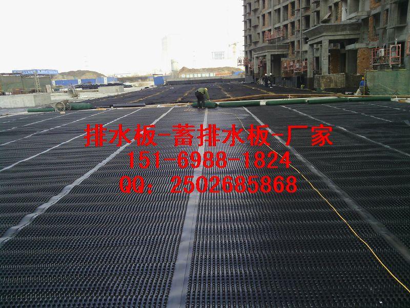 烟台2公分车库排水板厂家/烟台2公分地下室排水板价格
