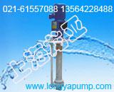 80FYS-40磷酸池加药泵