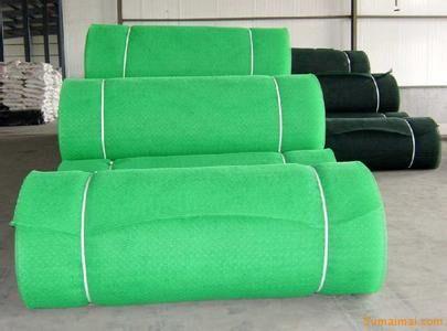 三维土工网垫价格四川三维土工网垫