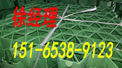 哈尔滨塑料植草格