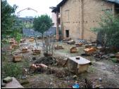 蜂群箱蜂笼蜂中蜂种蜂群蜂具巢础巢脾摇蜜机蜂箱