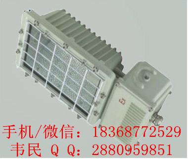 GTD5130-Y防爆泛光灯