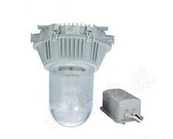 NFE9180防眩应急泛光灯70w防爆应急灯