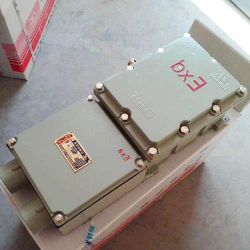 断路器 防爆断路器 BDZ10系列防爆断路器 IIB IIC