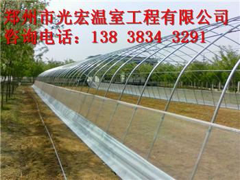 专业建设温室大棚塑料大棚养殖大棚安装