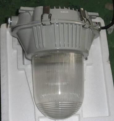 SNF104防眩泛光灯 广照型三防弯灯