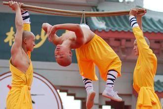 少林寺武术培训基地能学到什么