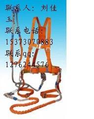 上海生产红色双背双保险安全带有质量保证