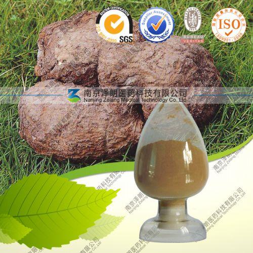 药食同源茯苓提取物 茯苓浓缩粉茯苓固体饮料厂家专业生产纯天然