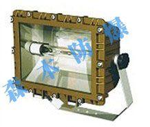 SBD1109,SBD1109,SBD1109免维护节能防爆泛光