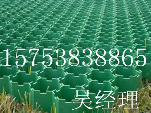绍兴植草格厂家15753838865