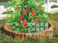 园林木质花盆