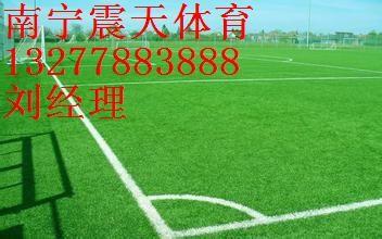 供应凭祥人造草坪报价,足球场草坪施工