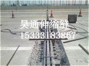 GQF-C40伸缩缝桥梁伸缩缝价格昊通供应黑龙江