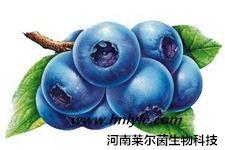 原花青素 植物提取物 标准品 对照品