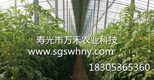 寿光市万禾农业科技有限公司的形象照片