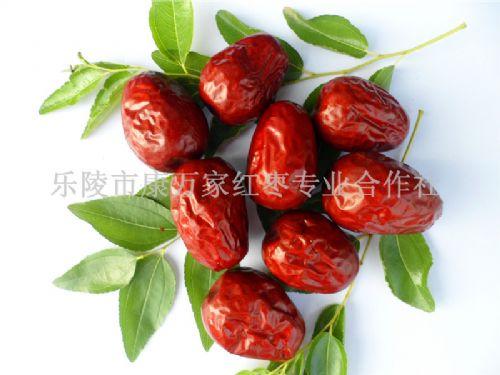 新疆和田大枣市场批发价格