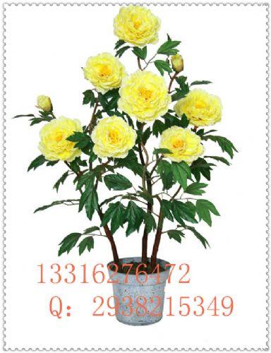 仿真牡丹花盆景辦公室客廳陽臺裝飾擺放仿真花盆栽