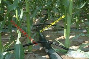 四川大棚黄瓜水肥一体化灌溉PE管