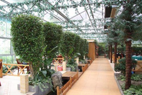 苏州生态餐厅 温室餐厅