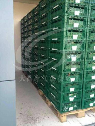 蔬菜保鲜设备,果蔬预冷保鲜机,大昌真空预冷机厂家