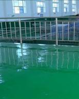 供应乌鲁木齐学校专用绿色环氧地坪