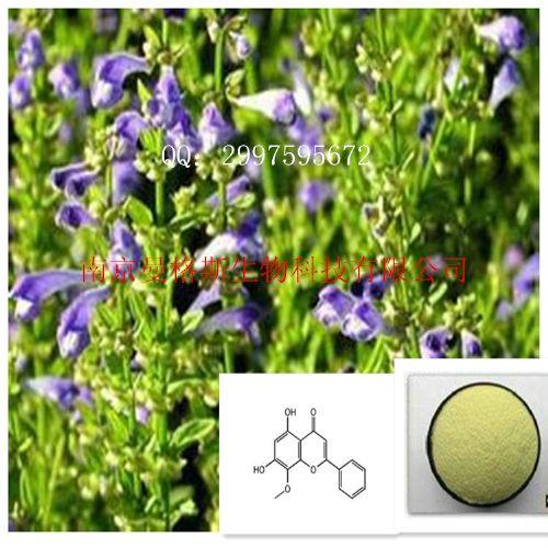 汉黄芩素98%汉黄芩素厂家汉黄芩素价格