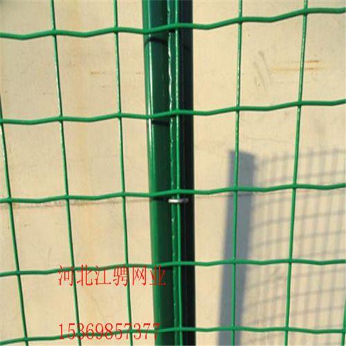 浸塑荷兰网-圈玉米网-养鸡荷兰网-圈地护栏网