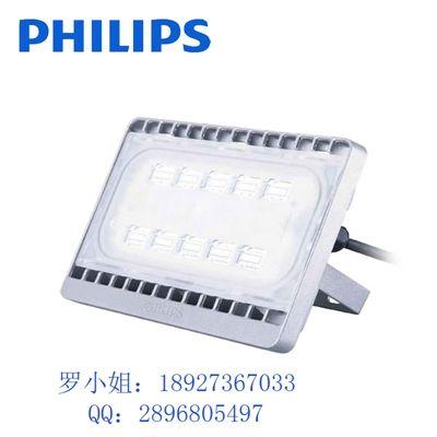 飞利浦园林景观LED投光灯/泛光灯BVP162 110W