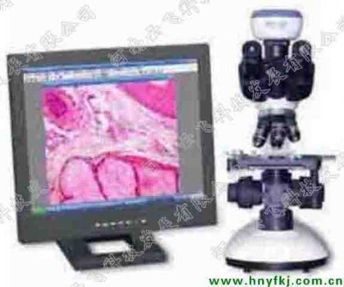 TS2009光学显微镜及成像设备