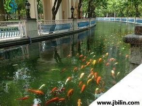 供应浙江杭州景观水处理、宁波景观水处理、温州景观水处理