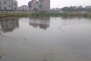 供应浙江杭州池塘水治理、宁波池塘水治理、温州池塘水治理