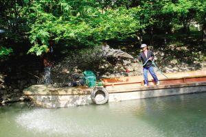 供应浙江杭州河水养护、宁波河水养护、温州河水养护