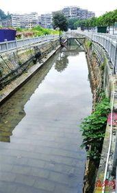 供应浙江杭州河水除臭、宁波河水除臭、温州河水除臭