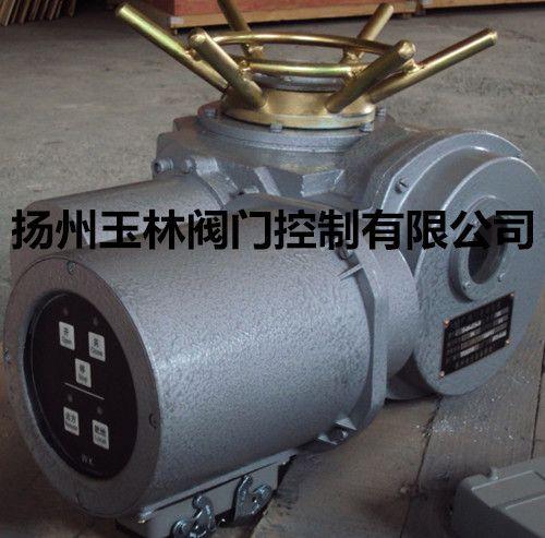 扬州玉林阀门电动装置DZW10-24-A00-WK